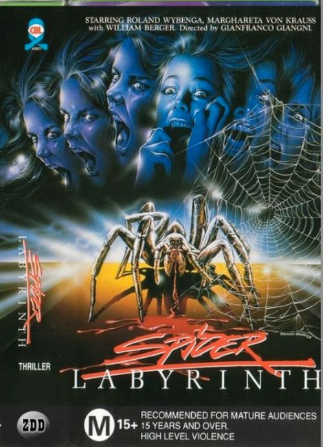 The-Spider-Labyrinth