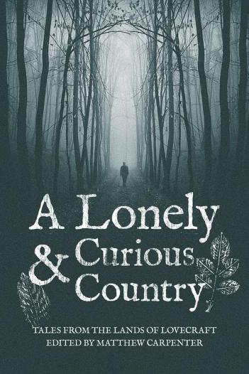 A Lonely and Curious Country